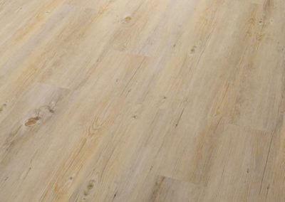 Alaska Oak