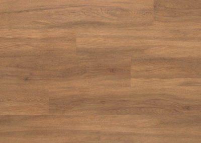 Palmer Oak